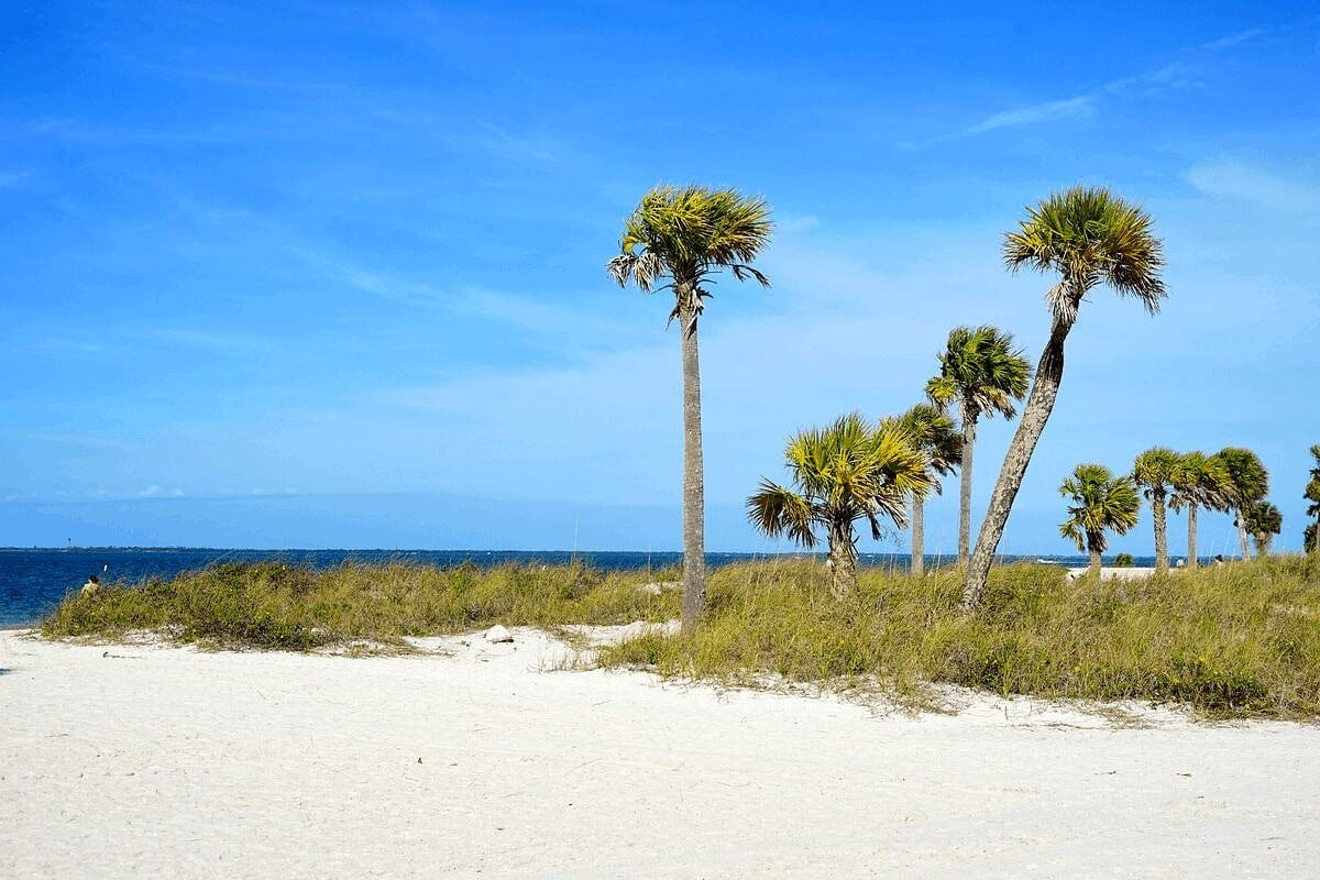 Palm Harbor, FL, one of the cities near tampa